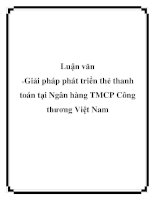 Luận văn: Giải pháp phát triển thẻ thanh toán tại Ngân hàng TMCP Công thương Việt Nam doc
