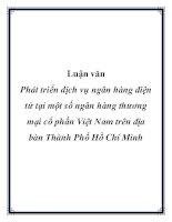 Luận văn: Phát triển dịch vụ ngân hàng điện tử tại một số ngân hàng thương mại cổ phần Việt Nam trên địa bàn Thành Phố Hồ Chí Minh pot