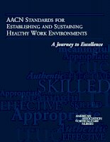 AACN STANDARDS FOR ESTABLISHING AND SUSTAINING HEALTHY WORK ENVIRONMENTS pot