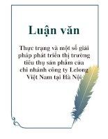 Luận văn: Thực trạng và một số giải pháp phát triển thị trường tiêu thụ sản phẩm của chi nhánh công ty Lelong Việt Nam tại Hà Nội pot