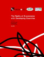 The Reality of E-commerce with Developing Countries pptx