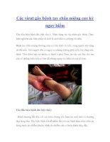 Các virut gây bệnh tay chân miệng cực kỳ nguy hiểm potx