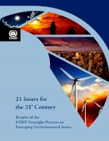 Results of the UNEP Foresight Process on Emerging Environmental Issues docx