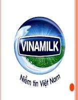 ĐỀ TÀI: Phân Tích Ma Trận BCG của VINAMILK pptx