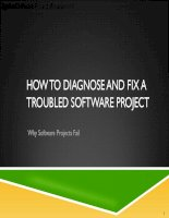 Applied Software Project Management - HOW TO DIAGNOSE AND FIX A TROUBLED SOFTWARE PROJECT pptx