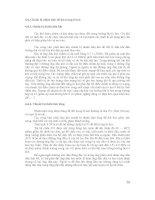 Chương 4. Buồng lửa lò hơi và thiết bị đốt nhiên liệu - Phần 3 (cuối) ppt