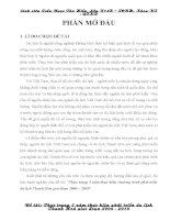 Tiểu luận Địa Lý kinh tế Thanh Hóa pdf