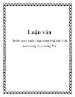 Luận văn:Triển vọng xuất khẩu hàng hoá của Việt nam sang thị trường Mỹ docx