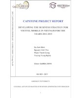 Trương Trung Nghĩa - CAPSTONE PROJECT REPORT DEVELOPING THE BUSINESS STRATEGY FOR VIETTEL MOBILE IN VIETNAM FOR THE YEARS 2011-2015 pptx