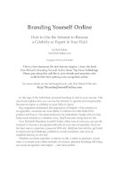 Branding Yourself OnlineHow to Use the Internet to Become a Celebrity or Expert docx