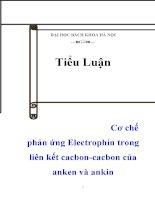tiểu luận  cơ chế phản ứng electrophin trong liên kết cacbon-cacbon của anken và ankin
