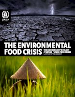 THE ENVIRONMENTAL FOOD CRISIS pot