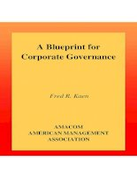 A Blueprint for Corporate Governance docx