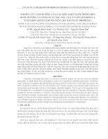 Báo cáo đề tài: NGHIÊN CỨU ẢNH HƯỞNG CỦA CÁC ĐIỀU KIỆN NUÔI TRỒNG ĐẾN SINH TRƯỞNG VÀ NĂNG SUẤT THU DẦU CỦA VI TẢO CHLORELLA VULGARIS NHẰM LÀM NGUYÊN LIỆU SẢN XUẤT BIODIESEL ppt