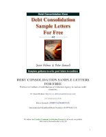 DEBT CONSOLIDATION SAMPLE LETTERS FOR FREEWritten to Creditors, Credit Bureau or Collection Agency pdf
