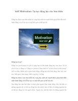 Self Motivation: Tự tạo động lực cho bản thânĐộng lực được xem như niềm hy pdf