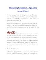 Marketing Grammar – Ngữ pháp trong tiếp thị pdf