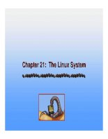 Operating System Concepts - Chapter 21: The Linux System pot