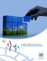 Health and Environment in Europe: Progress Assessment doc
