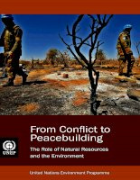 From Conflict to Peacebuilding The Role of Natural Resources and the Environment pdf