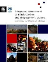 IntegratedAssessment ofBlackCarbon andTroposphericOzone docx