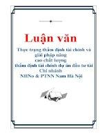 Luận văn: Thực trạng thẩm định tài chính và giải pháp nâng cao chất lượng thẩm định tài chính dự án đầu tư tài Chi nhánh NHNo & PTNN Nam Hà Nội pdf