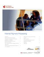 Internet Payment Processing Introduction What is online payment processing? How hard is it ppt