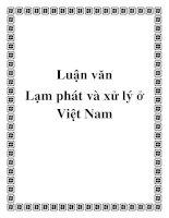 Luận văn: Lạm phát và xử lý ở Việt Nam pot