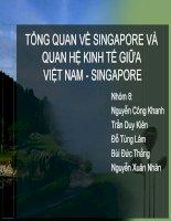 ĐỀ TÀI : TỔNG QUAN VỀ SINGAPORE VÀ QUAN HỆ KINH TẾ GIỮA VIỆT NAM - SINGAPORE pot