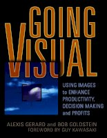 VISUALJohn Wiley & Sons, Inc.GOING USING IMAGES to ENHANCE PRODUCTIVITY, DECISION MAKING, and profits doc