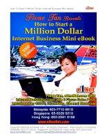 How To Start A Million Dollar Internet Business Mini eBook pdf