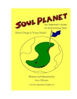 SOUL PLANET: An Explorer's Guide to Overcoming Fear How Deep is Your Hole? pdf
