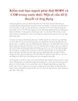 Kiểm soát hạn ngạch phát thải BOD5 và COD trong nước thải: Một số vấn đề lý thuyết và ứng dụng pps