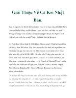Giới Thiệu Về Cá Koi Nhật Bản. pot