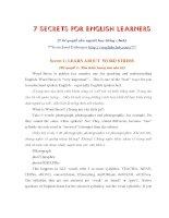 7 secrets for english learners ( 7 bí quyết cho người học tiếng anh) ppt
