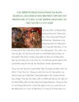 CÁC HÌNH VẼ PHẬT GIÁO CỔ ĐẠI TẠI HANG BAMIYAN, AFGANISTAN ĐÃ CHO THẤY SƠN DẦU CÓ NGUỒN GỐC TỪ CHÂU Á CHỨ KHÔNG PHẢI CHÂU ÂU NHƯ NGƯỜI TA VẪN NGHĨ docx