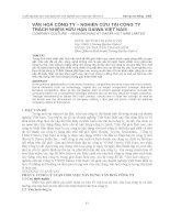văn hoá công ty – nghiên cứu tại công ty trách nhiệm hữu hạn daiwa việt nam