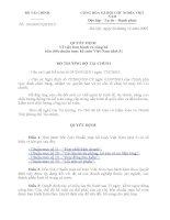 QUYẾT ĐỊNH Về việc ban hành và công bố bốn (04) chuẩn mực kế toán Việt Nam (đợt 5) pot