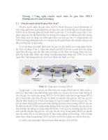 Công nghệ chuyển mạch nhãn đa giao thức MPLS (Multiprotocol Label Switching). docx