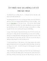 ĂN NHIỀU RAU QUẢ ĐẮNG, CAY CÓ THỂ SẨY THAI pdf