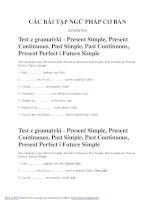 Bài tập ngữ pháp Anh văn pdf