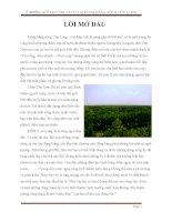 đề tài ' ô nhiễm môi trường nước tại đồng bằng sông cửu long '