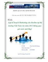 Đề Tài: Lập kế hoạch Marketing cho Beeline tại thị trường Việt Nam vào năm 2011 thông qua gói cước mới Big2 pot