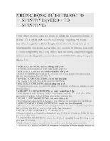 NHỮNG ĐỘNG TỪ ĐI TRƯỚC TO INFINITIVE pot