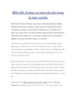 Hiểu biết về phục vụ rượu cho tiệc trong tổ chức sự kiện pdf