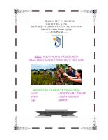 đề tài  thực hiện và giải pháp phát triển kinh tế nông hộ ở việt nam