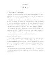 CÁC YẾU TỐ CƠ SỞ CỦA ĐỒ HỌA , CHƯƠNG 2 TÔ MÀU ppsx