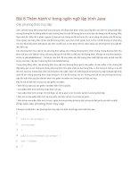 Bài 6 Thêm hành vi trong ngôn ngữ lập trình Java ppt