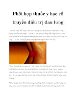 Phối hợp thuốc y học cổ truyền điều trị đau lưng pdf