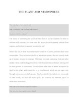 THE PLANT AND ATMOSPHERE ppsx
